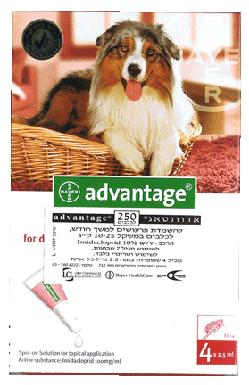 """אמפולות לעורף 4 יח´ לכלב בין 25-10 ק""""ג אדוונטאג´"""