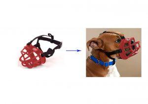 מחסום אילוף בצבע אדום לכלב מס 5 פטקס